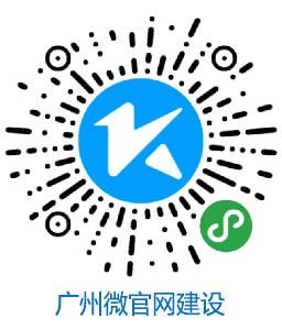 软件公司,软件开发,微信开发,小程序开发,网站开发
