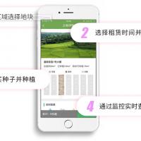 农业物联网更新功能(2019.5.28)