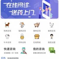 律师咨询付费系统更新功能(2020.10.16)